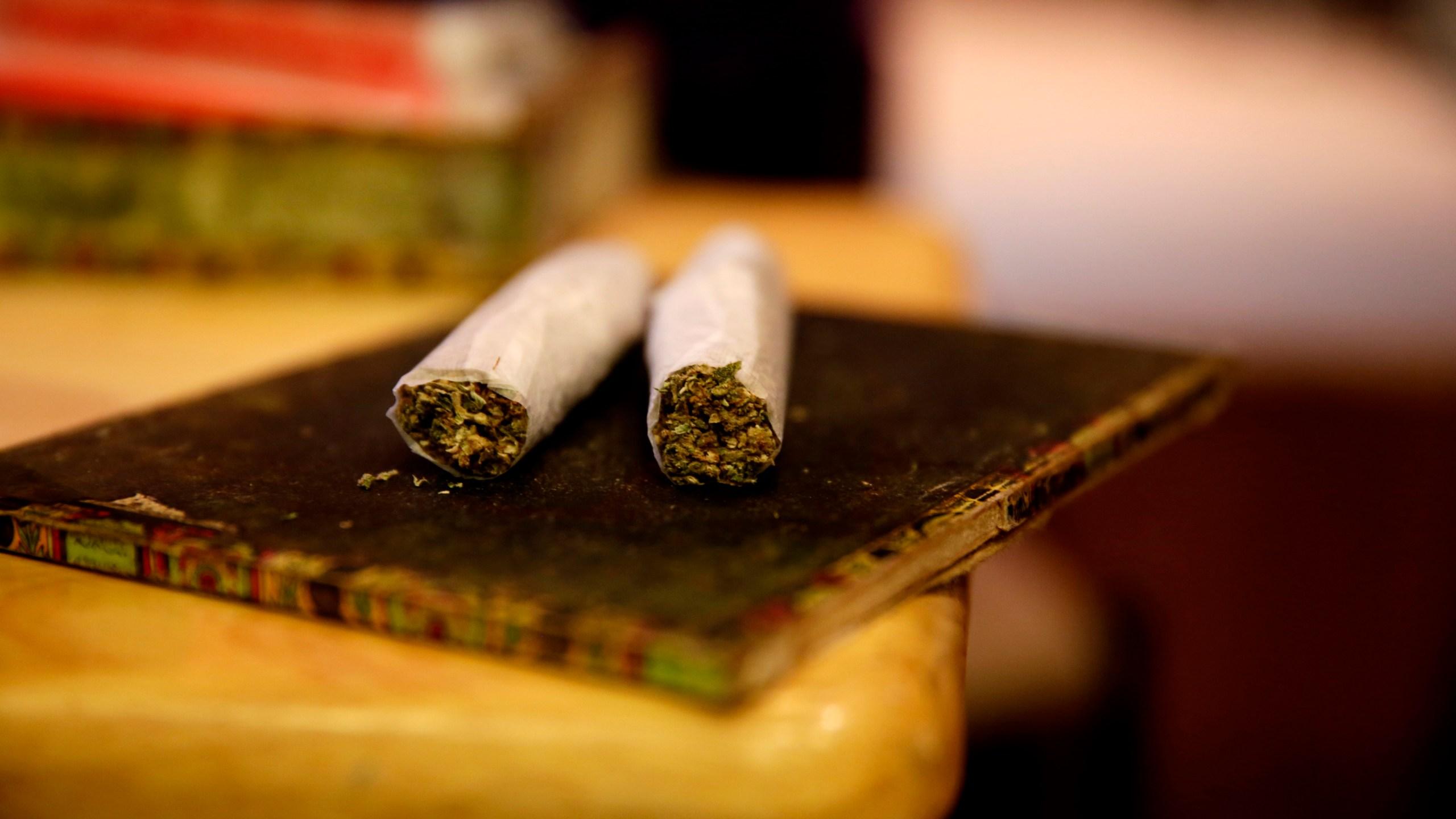 Unofficial Counterculture Marijuana Holiday Celebrated