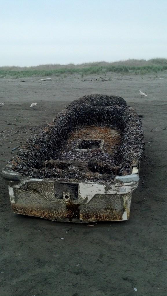 Japanese tsunami debris 2