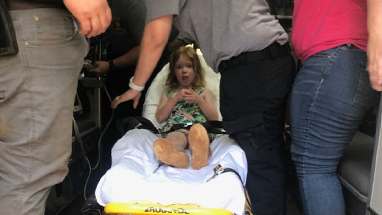 Missing 4-year-old found with her dog after surviving 48 hours in Alabama woods