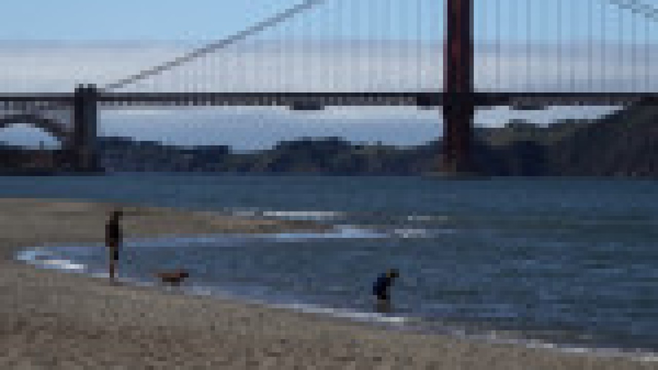 California scientist warns people to stay away from beaches during COVID-19 pandemic