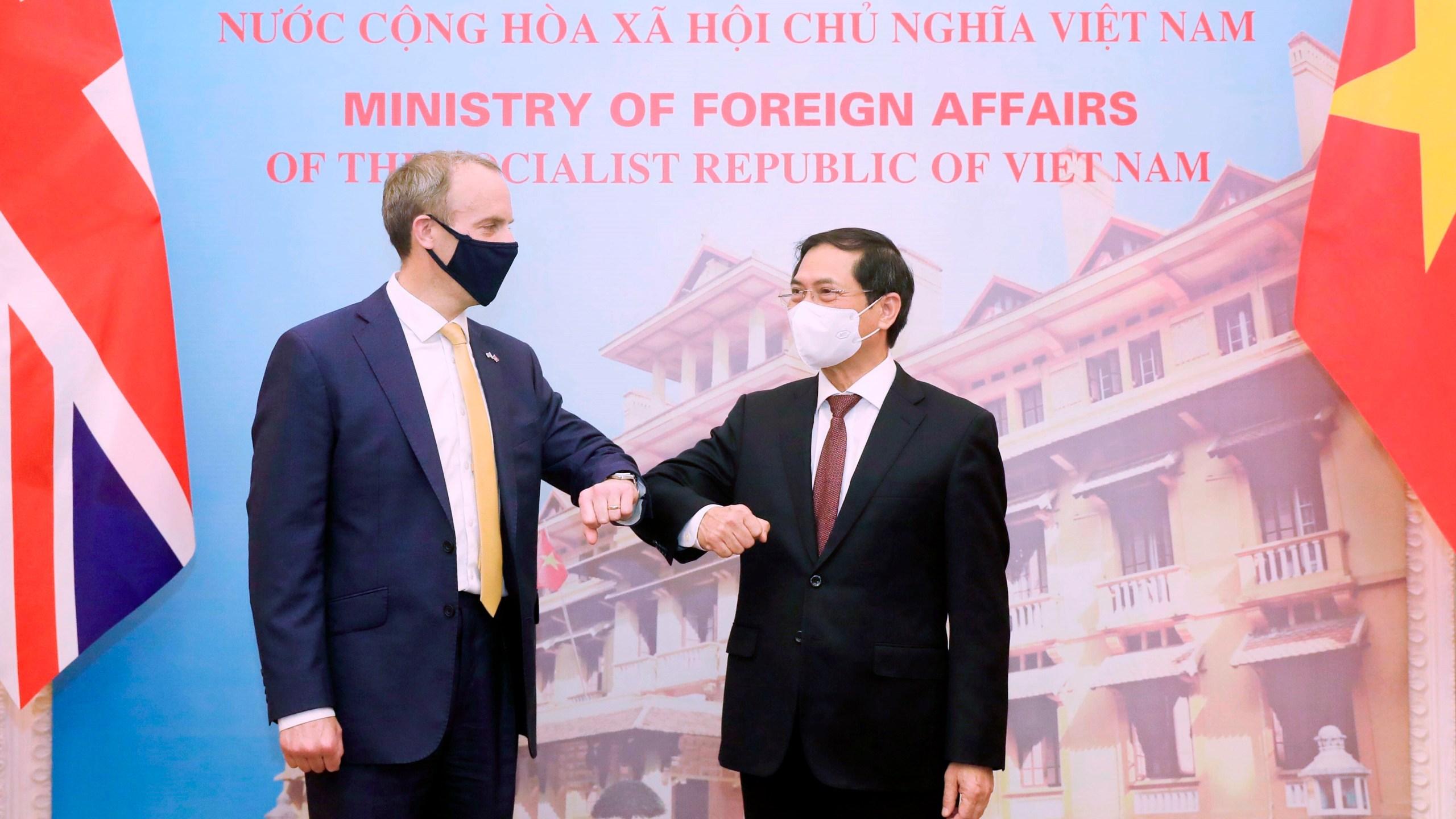 Dominic Raab, Bui Thanh Son