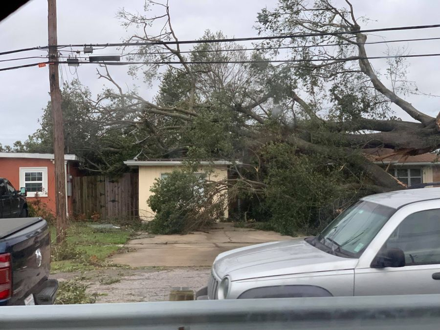 Home damaged by downed tree