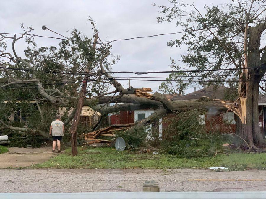 Massive tree crushes home