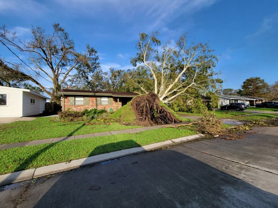 Metairie home crushed by large tree