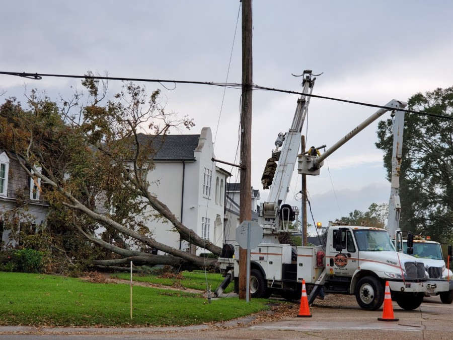 Metairie Road tree and powerline damage
