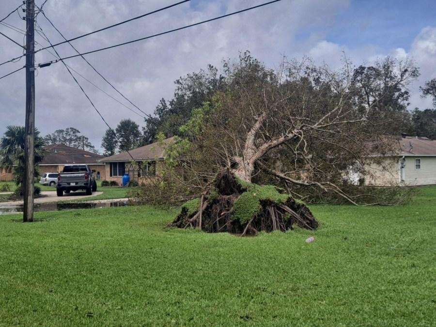 St. Bernard storm damage